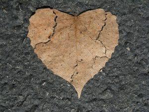 Broken Heart - Divorce